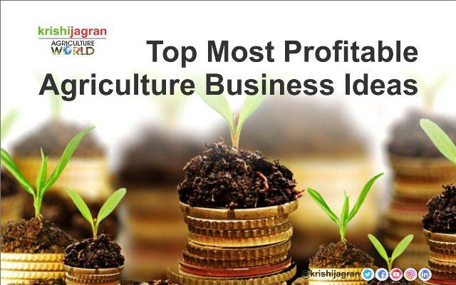 Top Most Profitable Agriculture Business Ideas