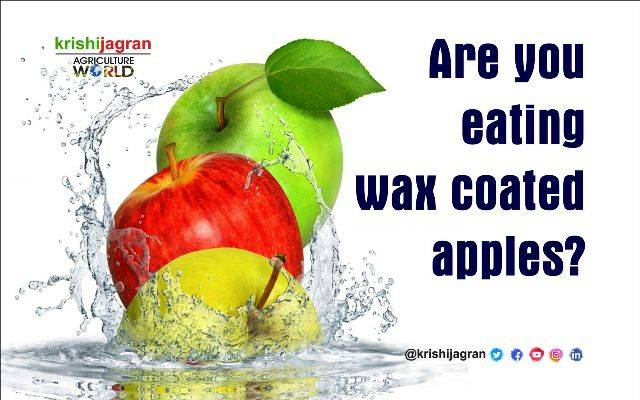 is the wax on apples bad for diet