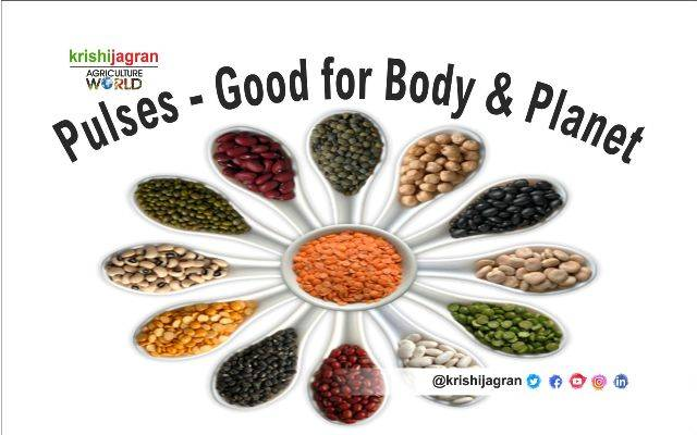 Pulses Good For Body Planet