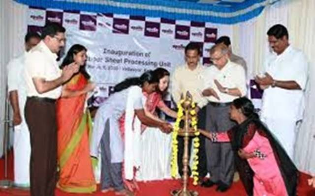 Initiative for the Women in Kerala