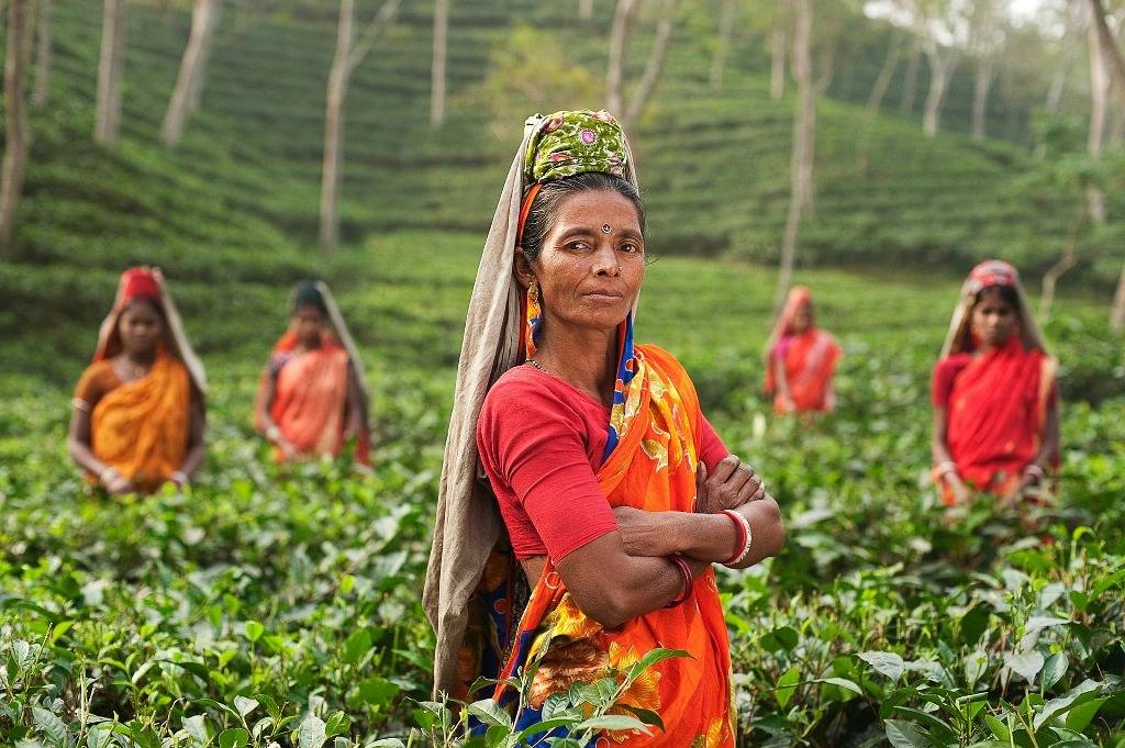 Her Farm, growing hope in the Himalaya - GlobalGiving