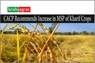 Good News! Govt to Increase MSP of Kharif Crops; Paddy, Corn & Millet to Give Profits