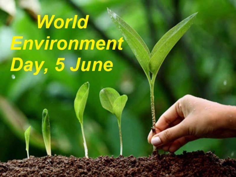 world environment day - photo #8