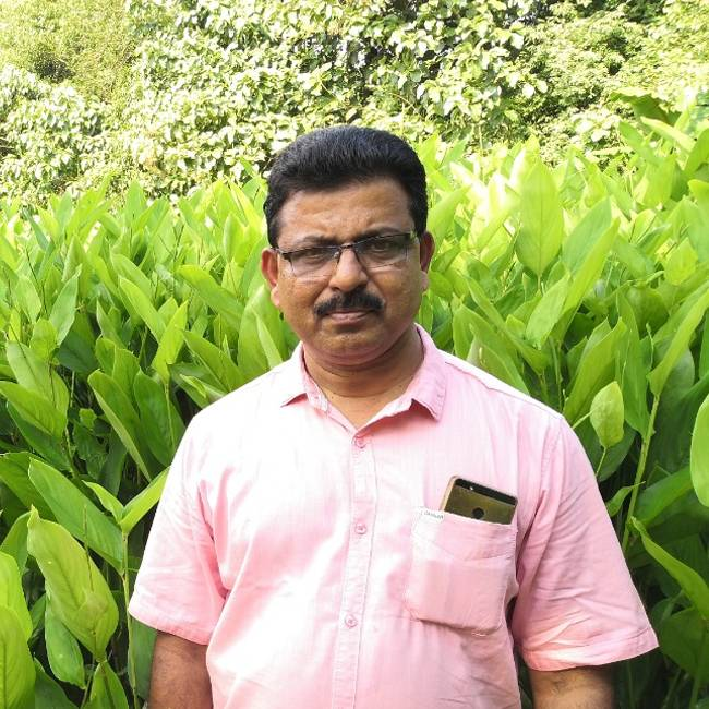 Balachandran Pillai K G