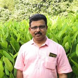 Balachandran Pillai K G