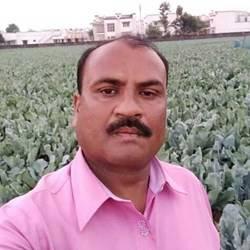 Kalpeshbhai Jayantibai Patel