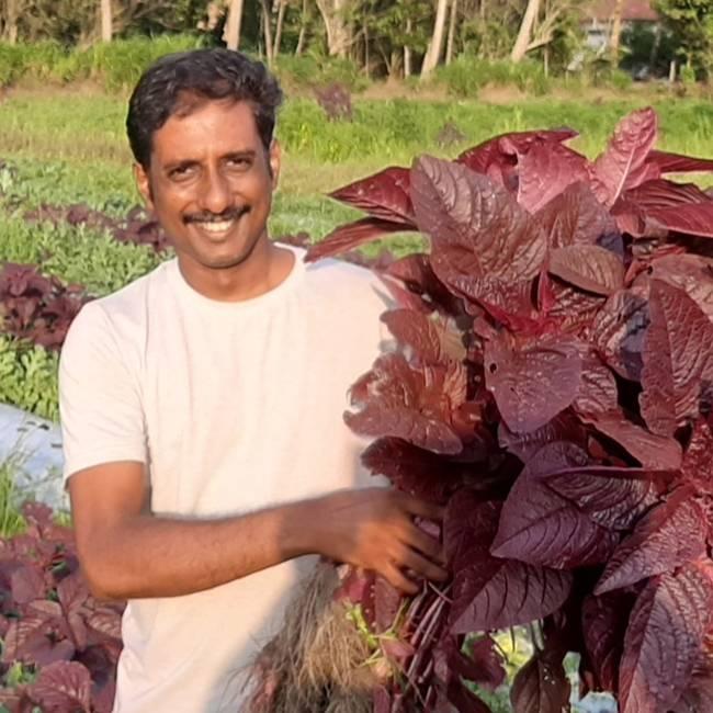 Nishad Mararikulam