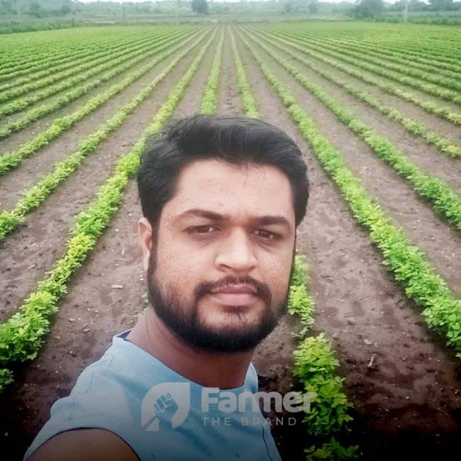 Jaybhai M. Kothiya