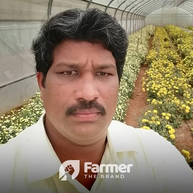 Sanivarapu Krishna Suman