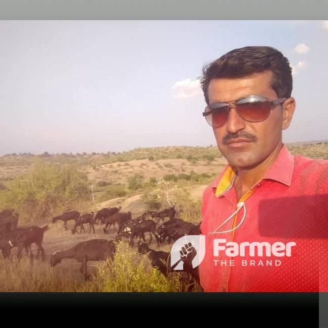 Ganesh Shejul