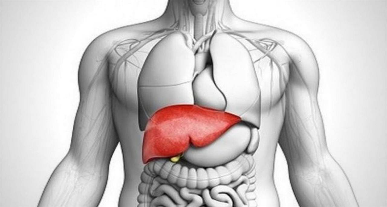 best liver specialist in malaysia